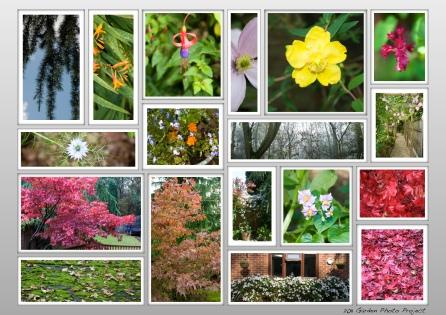 Garden Photo Poster