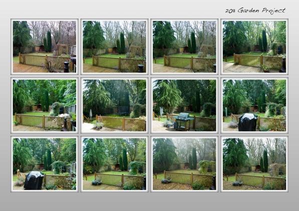 Garden Project 1