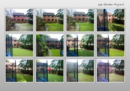 Garden Project 4
